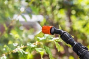 herbicide-weed-control-landscape-portland-oregon