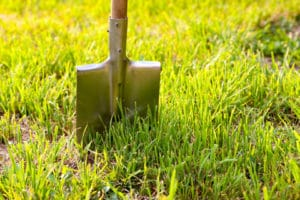 dethatching-lawn-portland-oregon