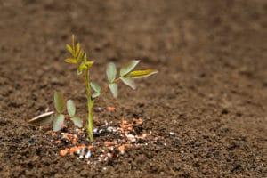 fertilization-services-portland-oregon
